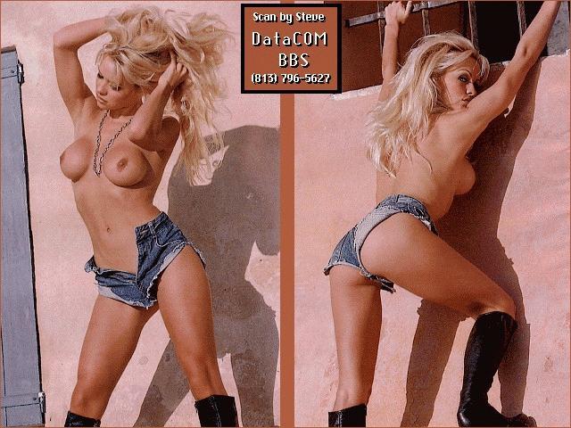 Free nude pamela anderson pics